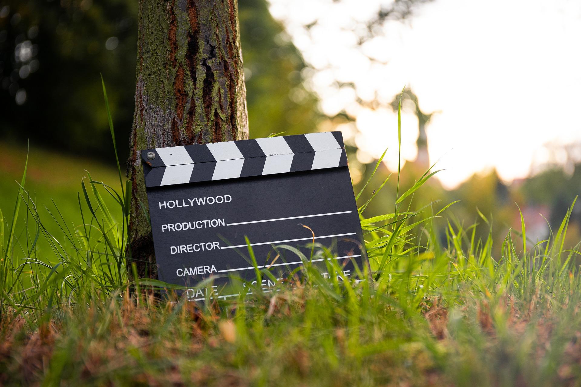Filmklappe lehnt an einem Baum